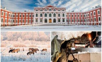 Не только Фестиваль ледовых скульптур. Топ-5 зимних развлечений в Елгаве