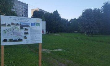 Atcelts lēmums par koku izciršanu vietā, kur plānots būvēt 'Lidl' lielveikalu