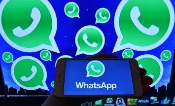 WhatsApp стал платным для бизнес-пользователей