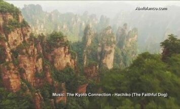Video: Iespaidīgi un fascinējoši kadri no Ķīnas nacionālā parka, kur filmēja 'Avataru'
