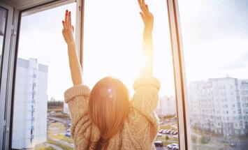 Да будет свет! 13 способов использовать солнечное окно с пользой