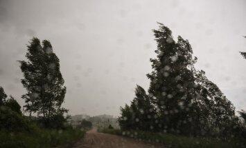 В воскресенье ожидается пасмурная и ветреная погода