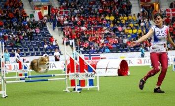 Чемпионат мира по аджилити: Латвия, Литва и Эстония показали высокие результаты