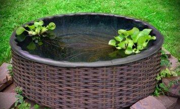 Mini dīķis – kā izveidot dārza akcentu bez lieliem ieguldījumiem