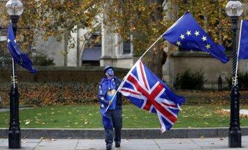 Опрос: половина британцев хотели бы провести новый референдум по Brexit