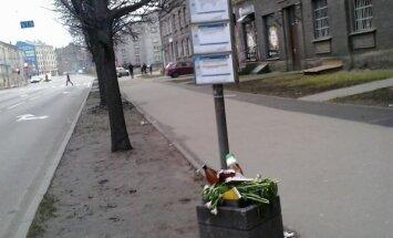 Об остановках Rīgas Satiksme: почему я должна нагибаться над урной с мусором, чтобы посмотреть расписание?