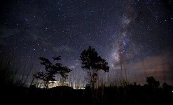 В ночь на пятницу жители смогут наблюдать звездный дождь
