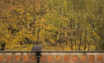 В четверг переменчивая погода: солнце, ветер и дожди