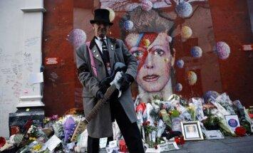 Фанаты Боуи начали сбор средств на памятник музыканту