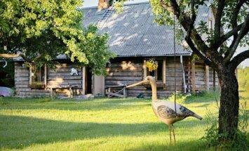Mājas atjaunošana vēstures un ģimenes vārdā – omulīgs guļbaļķu nams Cēsu pusē