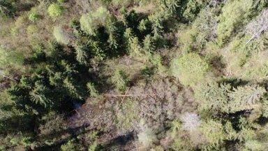 Latgalē izveidota jauna dabas taka, atklājot šī gada ģeovietu