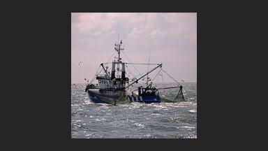 Baltijas jūras austrumos mencu nozvejas kvotas nākamajam gadam samazinātas par 92%