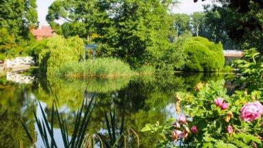 Foto: Pastaiga pa romantisko Tartu Universitātes botānisko dārzu