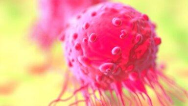 Борьба с раком: британские ученые обнаружили