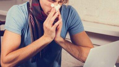 4 причины не ходить на работу больным