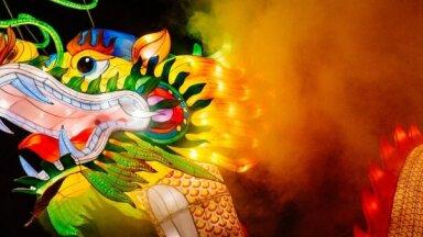 В Литве снова пройдет фестиваль китайских фонарей. Вот ФОТО прошлого года