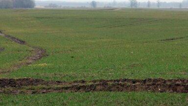 EK ļauj Latvijai izmaksāt lielāku lauksaimniecības maksājuma avansu