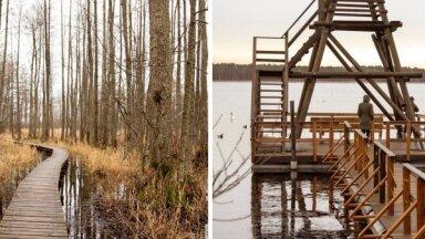 ФОТО. Природная тропа озера Слокас: всего час езды от Риги и вы в волшебном месте
