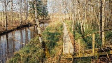 ФОТО. Только 60 км от Риги: интересная природная тропа по берегу Мергупе