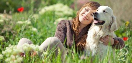 Британские ученые определили породу собак, которые чаще всего кусают людей
