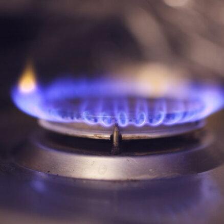 Страны ЕС решили расследовать причины рекордного скачка цен на газ