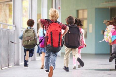 В Видземе признали, что маленькие школы придется реорганизовать