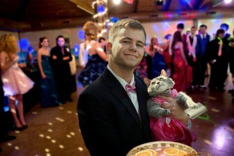 Парень решил пойти на выпускной со своей кошкой — интернет пришел в восторг!