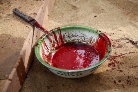 Asiņains vudū rituālu festivāls Rietumāfrikā