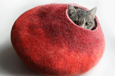 10 безумно толковых вещей, которые захочет каждый котовладелец