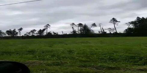 Vētras postījumi Siguldas novadā
