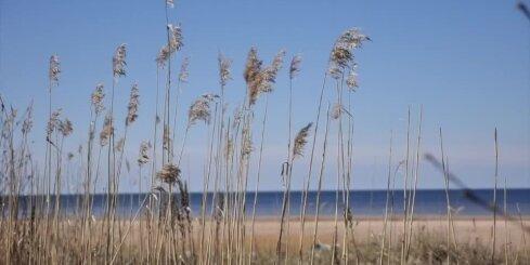 The Weather Company: август в Латвии тоже будет холоднее обычного