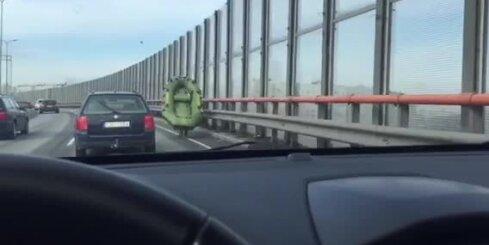 Pa Dienvidu tiltu skrien vīrietis ar laivu