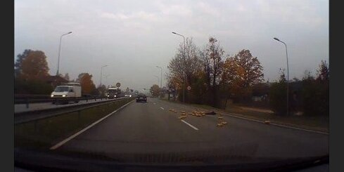 Maize uz A6 šosejas