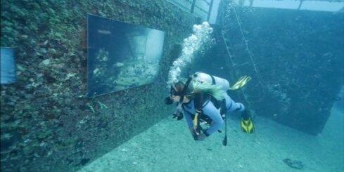 ASV atklāta zemūdens mākslas izstāde