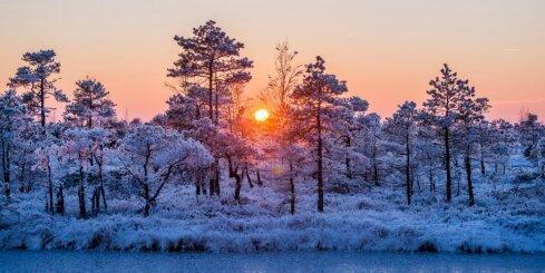 Ziemas saulstāvju tradīcijas: kā gatavosimies un kā svinēsim?
