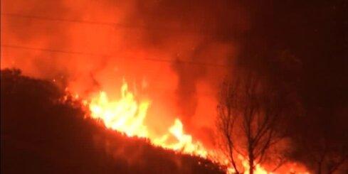 Jaunzēlandē plosās plašs ugunsgrēks