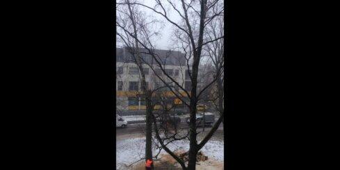 Koka zāģēšana Kalnciema ielā gandrīz beidzas traģiski