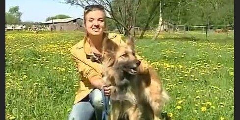 Dagmāra Legante par šķirnes suņiem un krancīšiem
