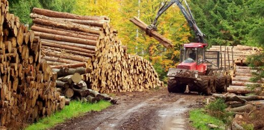 Valsts mēroga dabas katastrofas izsludināšana palīdzēs risināt problēmas, priecājas mežsaimnieki