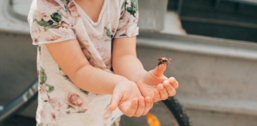 Bērnam iekodusi bite – dakteres un mammu ieteikumi