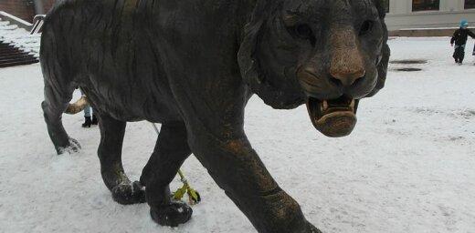 """Читатель: угадайте, почему столицу Норвегии называют """"городом тигров""""? (+ фото)"""