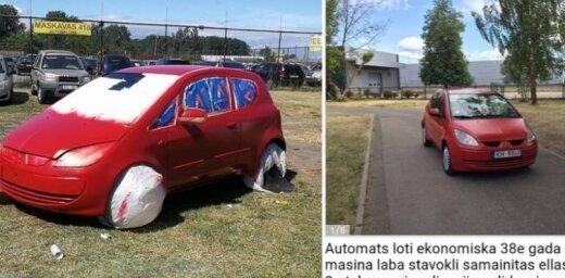 Video: Rumbulas zālājā ar aerosolu krāso auto pārdošanai