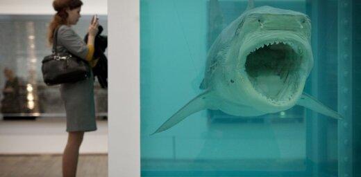 Mūsdienu mākslas šedevri: Damjena Hērsta slavenā haizivs