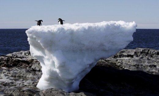 Starp vulkāniem, ledājiem un atkritumiem. Deviņas neparastas mākslinieku rezidences pasaulē