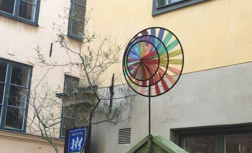 В Швеции — так. Как выглядит детсад, где воспитанников не делят на