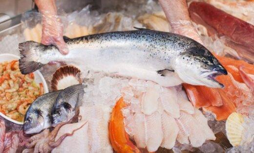 Latvijas zivrūpnieki kopš Krievijas embargo atraduši vairāk nekā 20 jaunas eksporta valstis