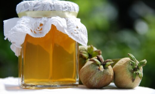 Dunavā mācās saglabāt vitamīnus ziemas periodam