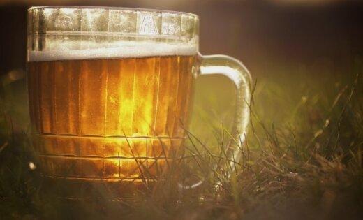 Новое предприятие в Огрском крае планирует производить 40 тонн кваса и пива в год