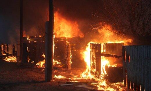 Пожар в психбольнице в Подмосковье: погибли 36 пациентов