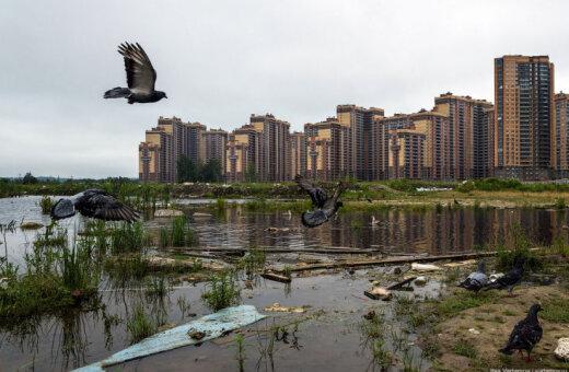 Ужас на болотах. Новый жилой район в Санкт-Петербурге вызывает жуткие ощущения